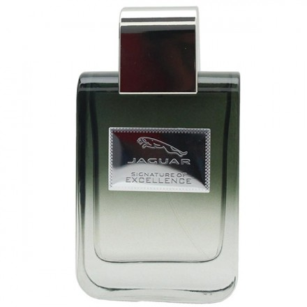 Signature of Excellence Man EDP